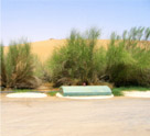 Al Maha Desert Resort (3 STP Plants)
